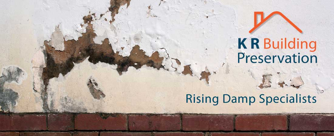 Rising Damp Specialists